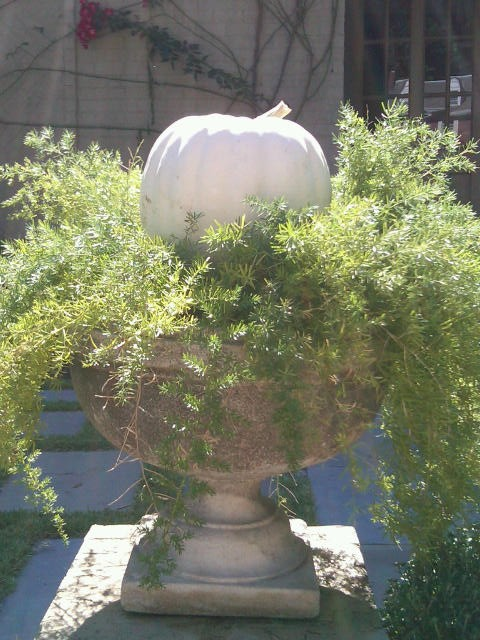 How To Incorporate Gourds Into Your Fall Decor Dana